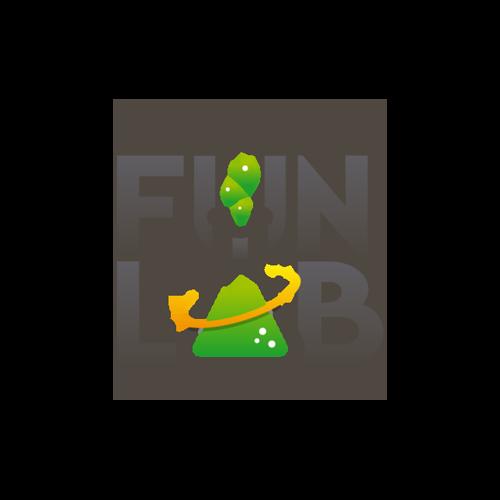 The Fun Lab