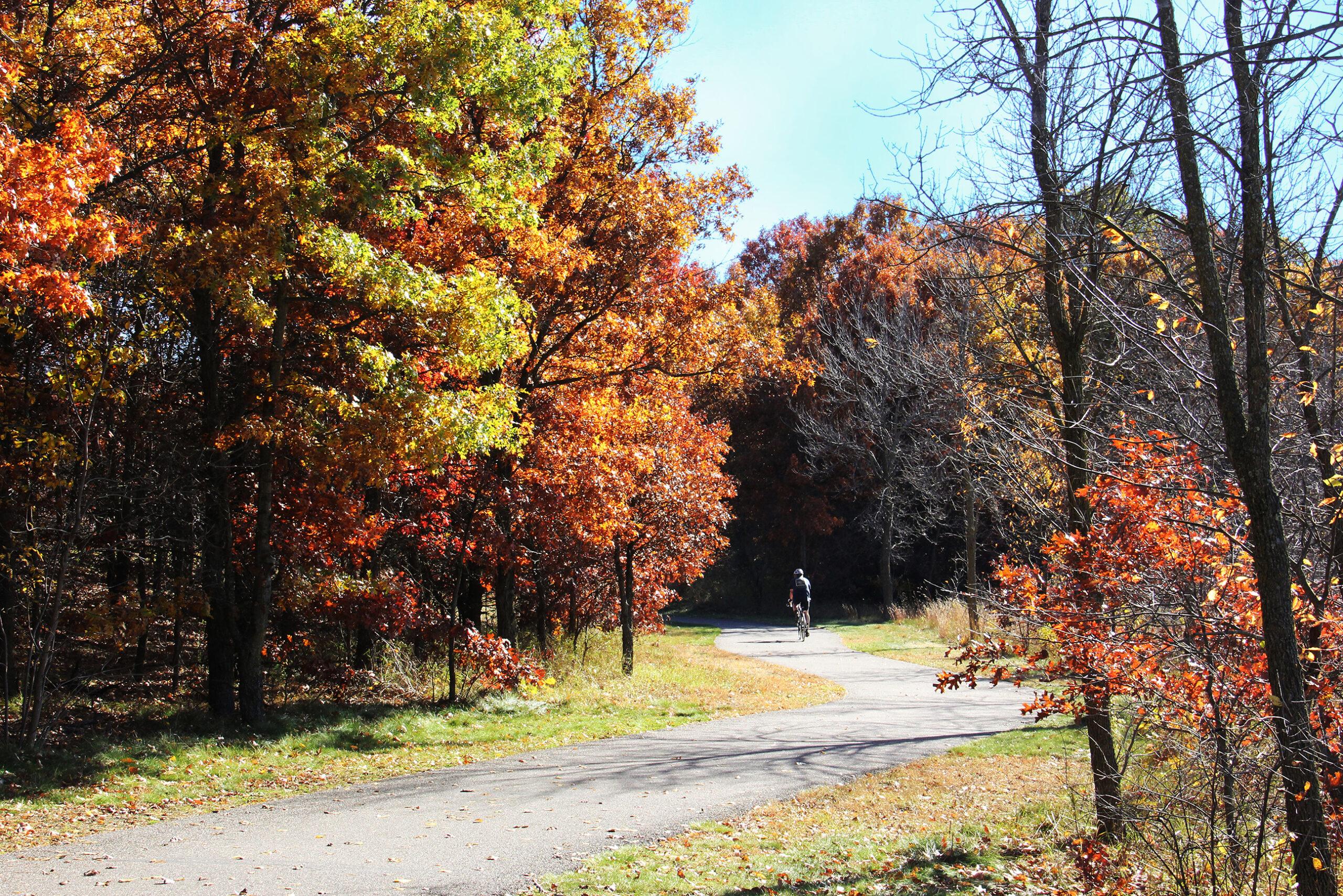Fall Biking
